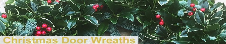 Christmas Holly Door Wreaths