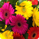 Athelney Florists Somerset | Athelney Flower Delivery Somerset. UK
