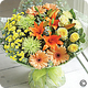 Hedging Florists Hedging Flowers Somerset. UK