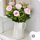 Preston Bowyer Florists Preston Bowyer Flowers Somerset. UK