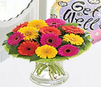 Musgrove Park Hospital Flower Delivery | Send Flowers To Musgrove Park Hospital Somerset