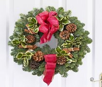 Festive Door Wreath Burgundy Code: JGFX80031BW  | Local Delivery Or Collect From Shop Only