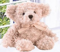 Button Bear Cuddly Teddy Code: T1720
