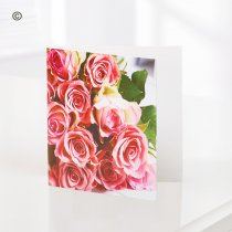 Pink Rose Greetings Card  Code: C06131ZF