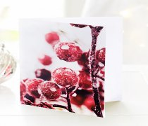 Christmas Berry Handwritten Greetings Card Code: JGF980CBHC  | Local Delivery Or Collect From Shop Only