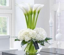 Luxury White Orchid and Freesia Vase : Code: LU10081WH