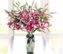 Luxury Pink Oriental Lily Vase: Code: JGFLU10031PI Local Delivery Only