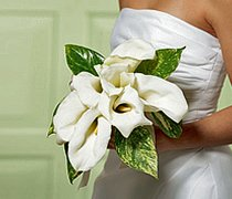 Chic White Calla Lily Bridal Bouquet Code: W1500