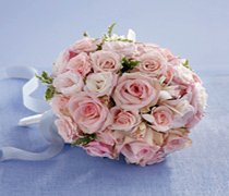 Soft Pink Rose & Orchid Bridal Bouquet Code: W1300