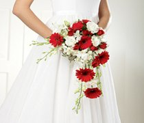 Crimson Gerbera & Orchid Shower Bridal Bouquet Code: W2100