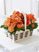 Autumn Begonia Basket Code: A70211MS