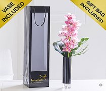 Elegant Pink Orchid Vase Code: C00251PS   | Local Delivery Only