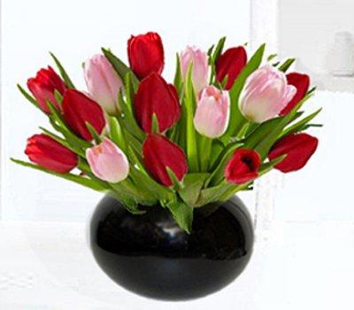 Red pink tulip globe vase code jgf24718rptg