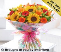 Extra Large Seasonal Splendour Sunflower and Lily Hand-tied  Code: H63093MS