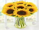 Large Sunflower Sunburst Vase Code: JGFSU6362LYS | Local Delivery Only
