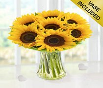 Large Sunflower Perfect Gift Code: H60362YS