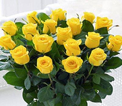 Elegant Large Yellow Rose Vase Code C00462ys 18 Yellow