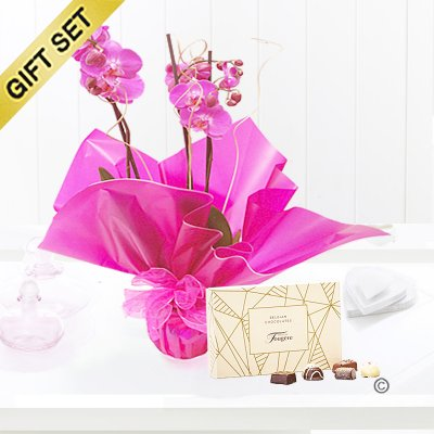 Pink Phalaenopsis Orchid Plant with a box of Luxury Belgian Chocolates Code: JGF1464POP-C  | Local Delivery Or Collect From Shop Only