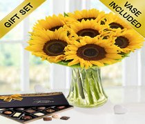 Large Sunflower Sunburst Vase With A Box Of Luxury Chocolates Code: JGFSU6362SLC | Local Delivery Only