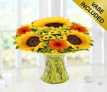 Sunflower Germini Vase Code: JGFSU61713YS  Local Delivery Only