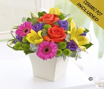 Vibrant Exquisite Arrangement Code: C00321VS