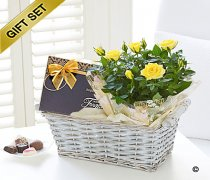 Yellow Rose and Chocolates Gift Basket Code: JGFS31621YS Local Delivery Only