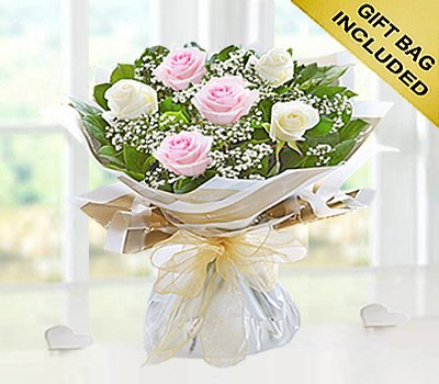 Six Stolen Kisses Pink and White Mixed Rose Hand-tied with White Gypsophila Code: JGF2716PWHS | Local Delivery Or Collect From Shop Only