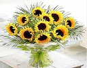 Luxury Sunflower handtied Code: JGFSU1206SFHT | Local Delivery Only