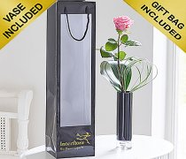 Single Kiss Pink Rose Vase Code: C09761PS | Local Delivery Or Collect From Shop Only