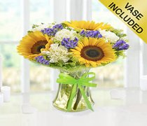 Get Well Sunflower Breeze Vase Code: JGFG3985GW  | Local Delivery Or Collect From Shop Only