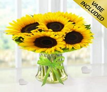 Sunflower Sunburst Get Well Soon Vase Code: JGFSU54879SSGW | Local Delivery Only / Collection in Shop Only