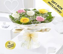 Amore Mixed 6 Rose Hand-tied Code: JGFV401796MR | Local Delivery Or Collect From Shop Only