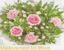 Pink Swirl Hand-tied Bouquet Code: JGF78241PSH | Local Delivery Only