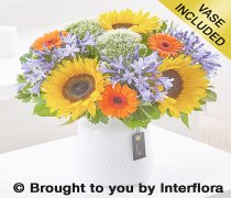 Sunflower and Agapanthus Vase Code: H63531MS