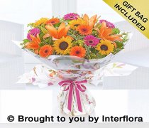 Large Dazzling Sunflower Hand-tied Code: A72672MS