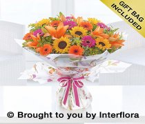 Extra Large Dazzling Sunflower Hand-tied Code: A72673MS