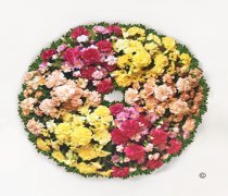 Classic Grouped Wreath Code:JGFF2283GW | Local Delivery Or Collect From Shop Only