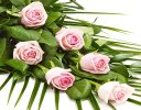 Simple Pink Rose Sheaf Code: F13511PS | National and Local Delivery