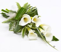 White Calla Lily Dracaena Sheaf Code: JGFF3101CLS | Local Delivery Or Collect From Shop Only