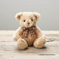 James Junior Bear Code: C15061ZF  | National and Local Delivery