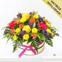 Happy Birthday Citrus Squeeze Hatbox Code: JGFH82151HBB | Local Delivery Or Collect From Shop Only