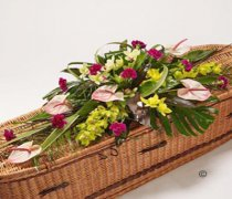 Orchid Casket Spray Pink and Green Code: JGFF1106CS  | Local Delivery Or Collect From Shop Only