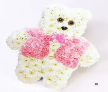 Teddy Bear Pink & White Code: JGFF136187PT | Local Delivery Or Collect From Shop Only