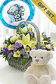 Baby Boy Basket with Teddy Bear and Balloon.  Code: NB1063WB