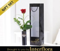 Single Kiss Red Rose Vase with Luxury Chocolates Code: V40991RB