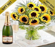 Luxury Sunflower Hand-tied with a lovely delicious bottle of Bubbly Champagne Code: JGFS663SHTBC  | Local Delivery Only