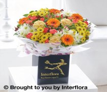 Large Autumn Celebration Flower Hand-tied Code: Code: A70082MS