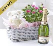 Baby Girl Celebratory Luxury Gift Basket Code: C00961PS