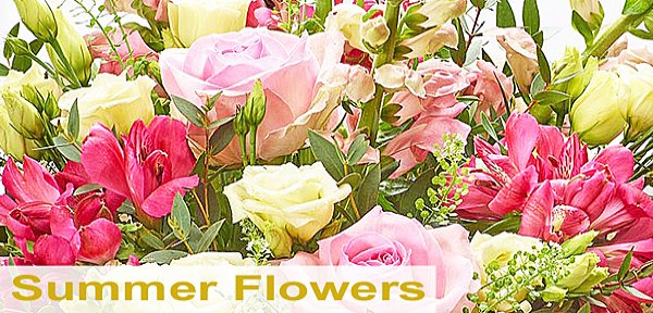 Summer Flowers | Taunton Flowers